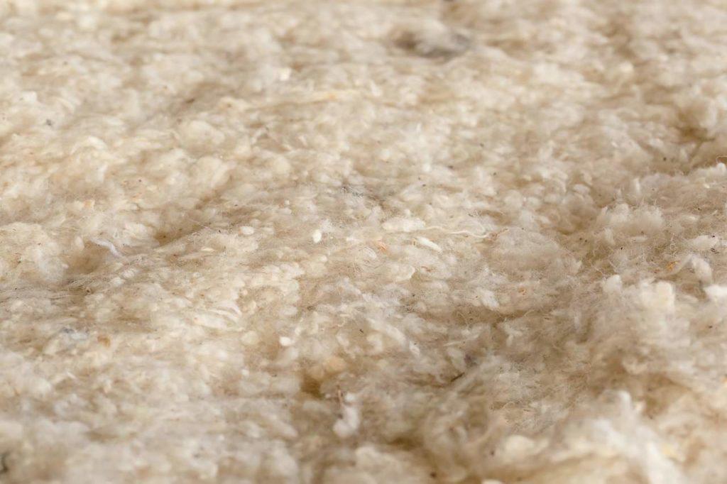 bavlna